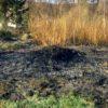 У Підбірцях горіла суха трава!
